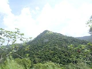 Cerro del Diablo Foothill in Ponce, Puerto Rico, United States