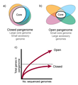Characteristics of open and closed pangenomes.png