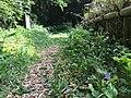 Chikurin Park in Higashikurume-shi (50546639618).jpg