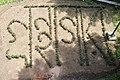Chittagong University Library garden (06).jpg