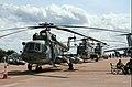 Choppers (830902266) (2).jpg