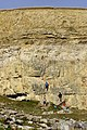 Climbers at hedbury quarry dorset.jpg