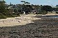 Coast-Devonport-20070310-013.jpg