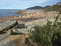 Coast at Bicheno Tasmania 20190725-020.jpg