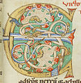 Codex Bodmer 127 066r Detail.jpg