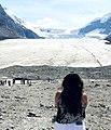 Columbia ice field.jpg