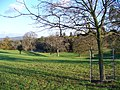 Combe Court Parkland - geograph.org.uk - 291810.jpg