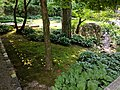 Como Park Zoo and Conservatory - 63.jpg