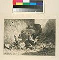 Coq et poules (NYPL b14917530-1161591).jpg