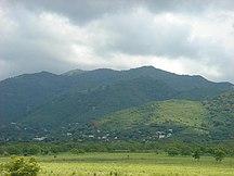 Guayama Municipio