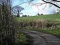 Cottages across the field - geograph.org.uk - 754353.jpg