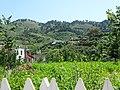 Countryside around Delvina - Albania - 03 (42346251281).jpg