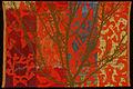 Crabapple by Bhakti Ziek.jpg