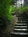 Cragside Estate - geograph.org.uk - 920056.jpg