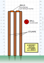 Diagram of a wicket composed of stumps and bails - ball shown for scale