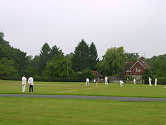 Cricket on Horn Fair day.JPG