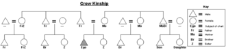 Crow kinship - Graphic of the Crow kinship system