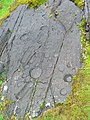 Cup and Ring marked rocks, Kilmichael Glassary - geograph.org.uk - 1014777.jpg