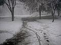 Curico, la nevada del 2007, cerro Condell (10029577063).jpg