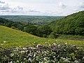 Cwm on north side of Pen-y-wern Hill - geograph.org.uk - 449095.jpg