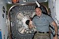 Cygnus Orb-D1.10.jpg