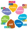 De Duurzaamheidsbloem, een model voor ecologische en sociale duurzaamheid, met koppeling naar SDG's.png