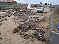 Debris Washed Ashore on Small Beach, South Shields - geograph.org.uk - 1729519.jpg