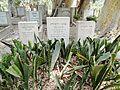 Degania Alef Cemetery Warburg.JPG