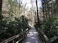 Delaware Water Gap National Recreation Area - Pennsylvania (5678358796).jpg