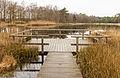 Delleboersterheide – Catspoele Natuurgebied van It Fryske Gea. Omgeving van Catspoele 013.jpg