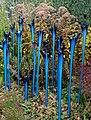 Denver Botanic Gardens 11-2 (15599527368).jpg