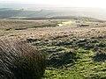 Descending Banc y Celyn - geograph.org.uk - 682164.jpg