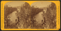 Devil's chair--on the St. Croix, from Robert N. Dennis collection of stereoscopic views.png