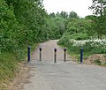 Disused road on the Aylestone Meadows - geograph.org.uk - 815397.jpg