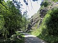 Divoká Šárka - panoramio (14).jpg