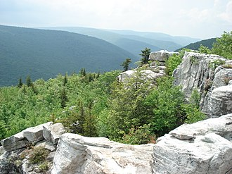 Dolly Sods Wilderness - Image: Dolly Sods 1