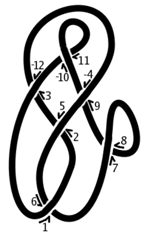 Dowker notation - A knot diagram with crossings labelled for a Dowker sequence
