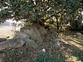 Driehauser steine.jpg