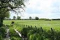 Dunkeswell, on Madford Hill - geograph.org.uk - 174133.jpg