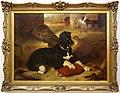 Edwin landseer, la sentinella vigile, 1822, cane.jpg