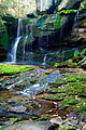 Elakala-waterfalls-vertical-long-exposure - West Virginia - ForestWander.jpg