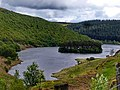 Elan Valley - panoramio (29).jpg