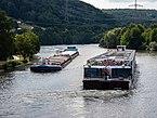 Eltmann Main Schiffe Nepomuk und Excellence Melodia 7295042.jpg