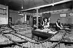 Employees sort mail into sacks in the Lethbridge Post Office (4731061039).jpg