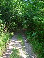 End of Footpath^ - geograph.org.uk - 896700.jpg