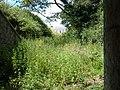 Entrance - geograph.org.uk - 489466.jpg