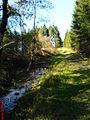 Entwässerungsgraben im Torfmoor.JPG