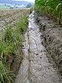 Erosion Furchen012.JPG