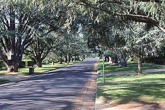 Reid, Australian Capital Territory - Euree St