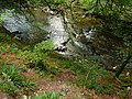 Exmoor , The River Barle and River Bank - geograph.org.uk - 1496964.jpg